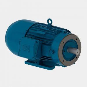 weg W22 Motofreio IR3 Premium 0.16 cv 2P 63 3F 220/380 V 60 Hz IC411 – TFVE – B34D
