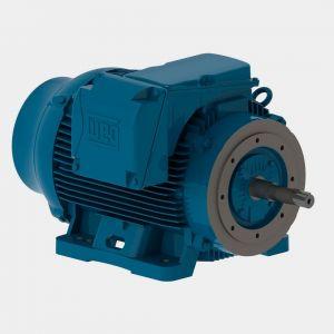 weg W22 Bomba Monobloco JP IR3 Premium 100 cv 2P 250S/M 3F 220/380/440 V 60 Hz IC411 – TFVE – B34D
